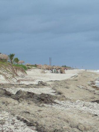 Blau Marina Varadero Resort: Varadero Beach...I walked 10km over 3 hours past each hotel