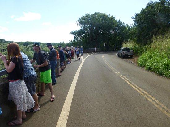 Wailua Falls : parking situation