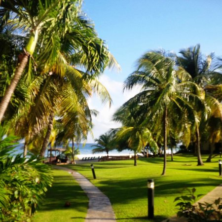 Renaissance St. Croix Carambola Beach Resort & Spa: Grounds beside our building