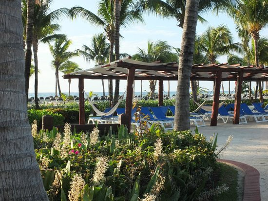 Barcelo Maya Tropical : Près de la piscine