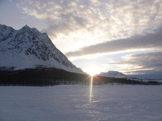 Dog Sledding Lyngen Alps Day Tour: lygen alps en chiens de traineau