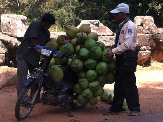 Cambodian Tour Guide Services: fresh coconuts