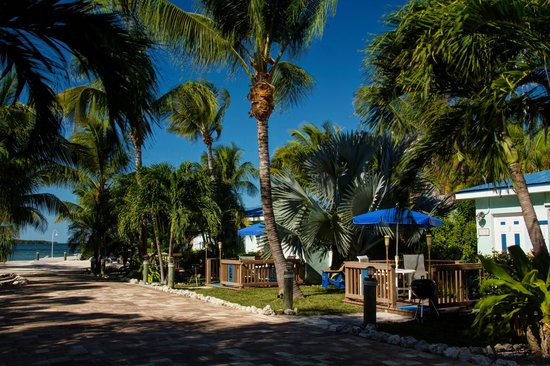 Island Bay Resort: Hundreds of different palms shade the resort