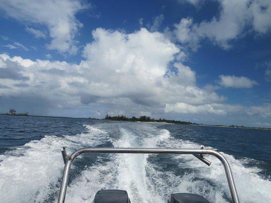 Dugong Mozambique - Inhassoro: Bye, bye Santa Carolina, from Martin's boat
