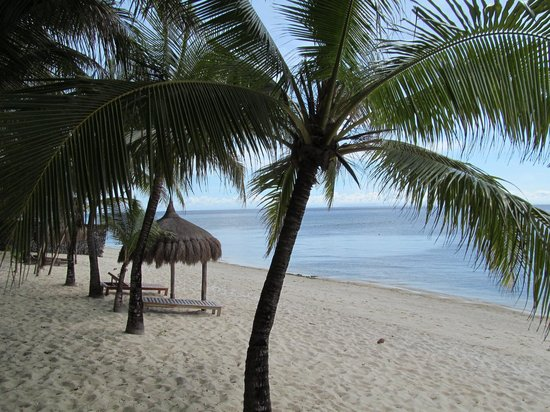 Coco Grove Beach Resort: Beautiful beach
