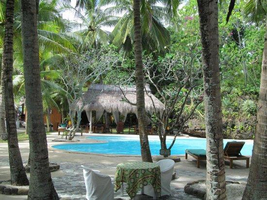 Coco Grove Beach Resort : Swimming pool