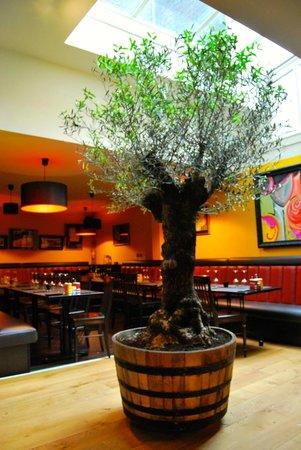 Steakhouse Carnal : Carnal 1