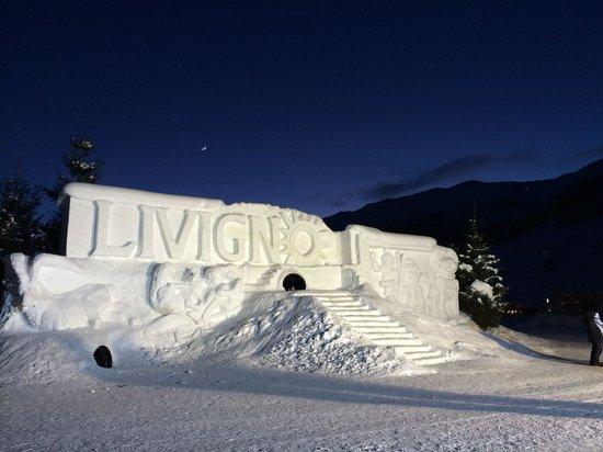 Hotel Alpina: Sculture di ghiaccio