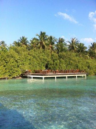 Embudu Village: terrasse