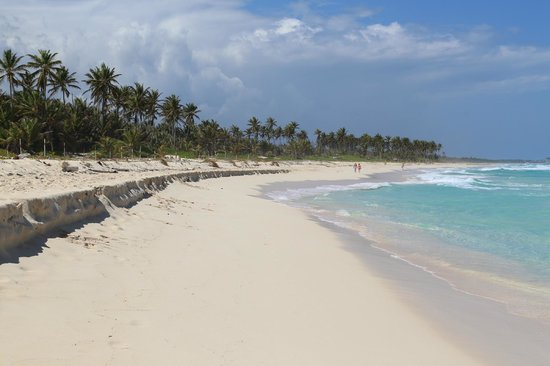 Occidental Caribe: empty unspoiled beach further down!