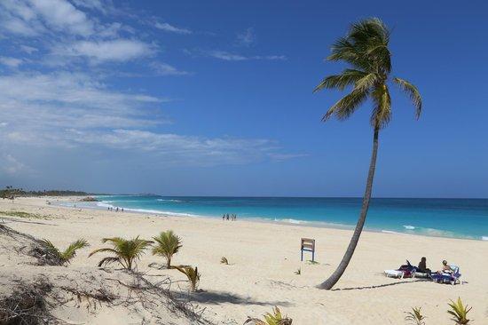 Occidental Caribe: beautiful beach!