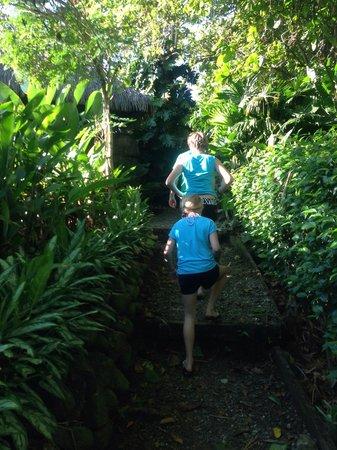 Lapa Rios Ecolodge Osa Peninsula: Path to rooms