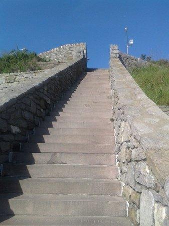 Cliff Walk: 40 Steps