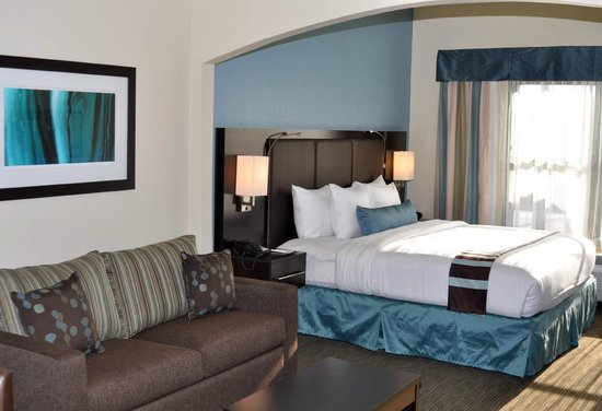 BEST WESTERN PLUS Tallahassee North Hotel: All of our newly remodeled rooms have modern decour
