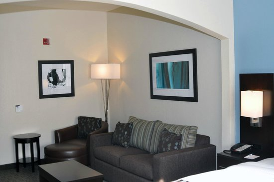 BEST WESTERN PLUS Tallahassee North Hotel: Each room is customized with modern artwork