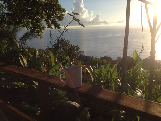 Lapa Rios Ecolodge Osa Peninsula: Enjoying our morning coffee that was delivered