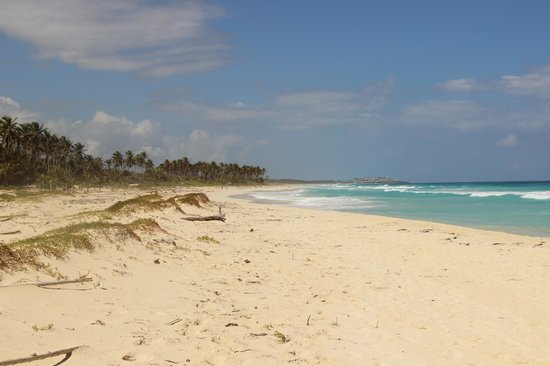 Occidental Caribe : walk to the right and youll see unpoiled natural empty beach