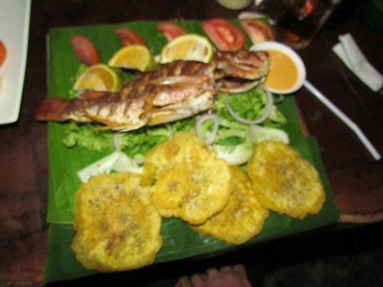 Drakes Kitchen, Casa El Tortugo : Amazing Dish