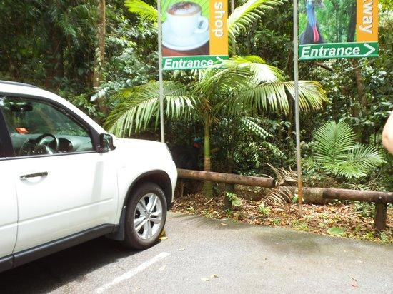 Ferntree Rainforest Lodge: lodge car park