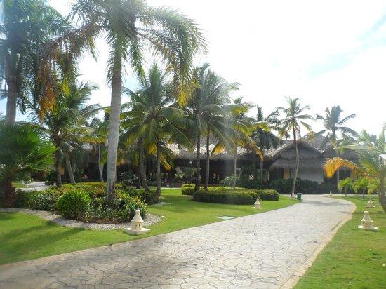 Tropical Princess Beach Resort & Spa: recepción