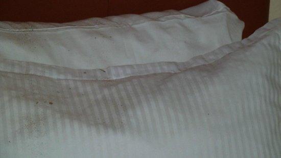 Diego De Mazariegos: Dirt in second bed
