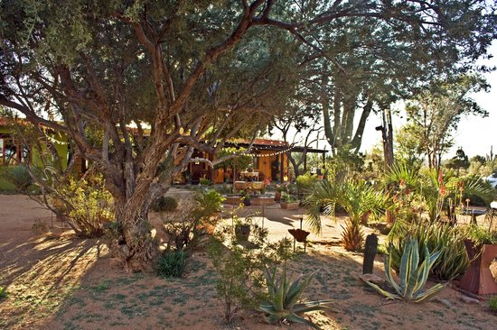 Hacienda Linda: The landscaping is beautiful with interesting personal touches.