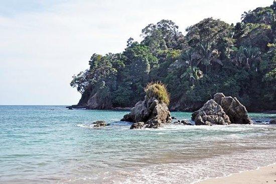 Arenas del Mar Beachfront & Rainforest Resort : La Playita