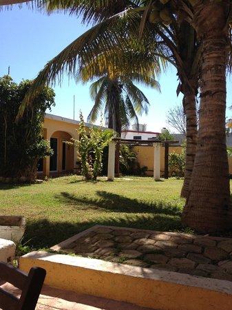 Hotel Quinta Progreso: All the bougainvillea are chopped down...no more garden.