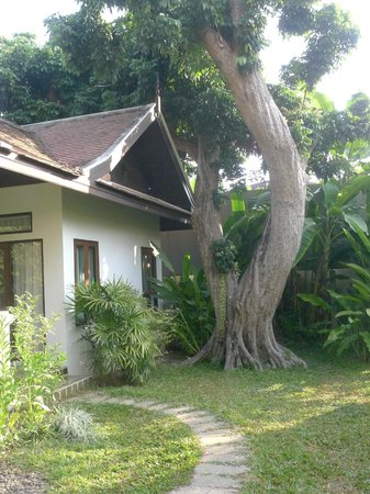 Baan Orapin Bed and Breakfast : Attractive grounds