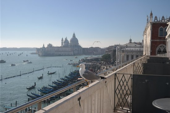 Hotel Danieli, A Luxury Collection Hotel: View from the terrace