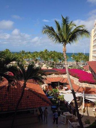 Hyatt Regency Aruba Resort and Casino: Pool/Ocean view