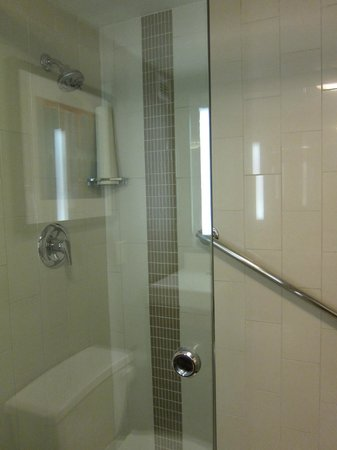 Hyatt Place New Orleans/Convention Center : Shower