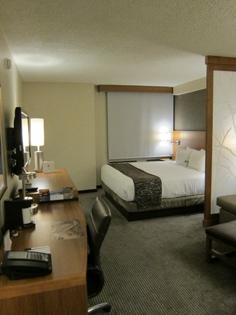 Hyatt Place New Orleans/Convention Center : Big bedroom with seating
