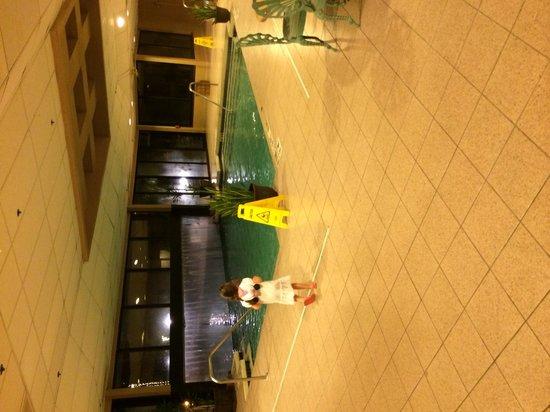 Sheraton Suites Orlando Airport: Indoor pool
