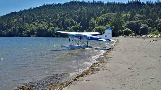 Pat Bay Air Floatplane Tours: Beach picnic on Salt Spring Island