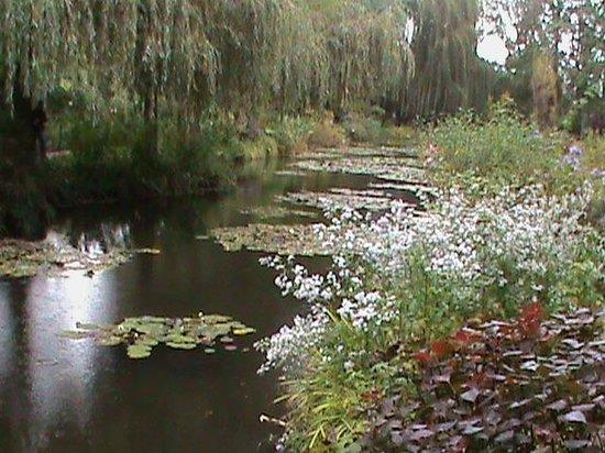 Foto De Casa Y Jardines De Claude Monet Giverny Lago Del