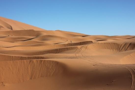 Le Chevalier Solitaire: in mezzo alle dune..