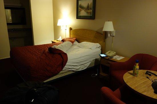 Skyway Inn Hotel: 部屋