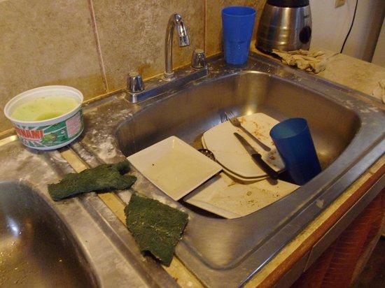 Tamarindo Backpackers: on est arrivé dans la cuisine commune pour manger le matin, nous étions les premières à l'utilis