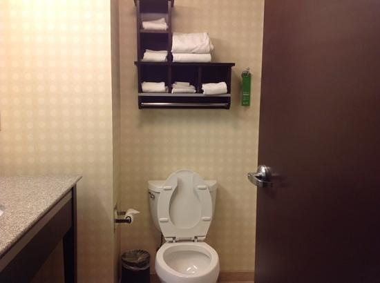 Hampton Inn and Suites Detroit/Airport-Romulus: baño