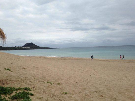 Chateau Beach Resort : The beach