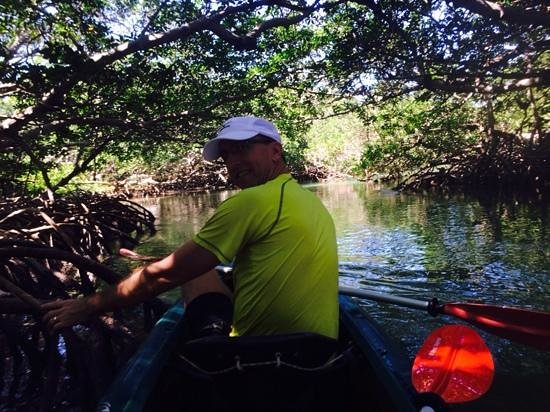 Danger Charters: in the mangroves