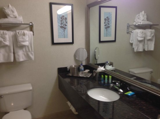 DoubleTree by Hilton Pleasant Prairie Kenosha : King Room Bathroom