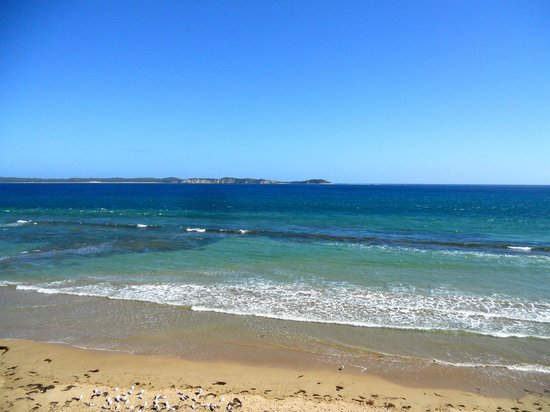 Starhaven Retreat: local beach