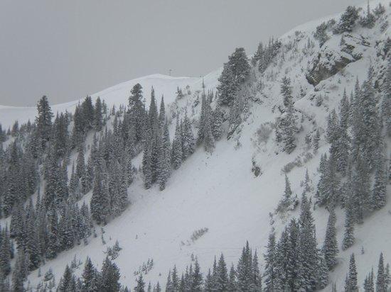 Deer Valley Resort: steeps