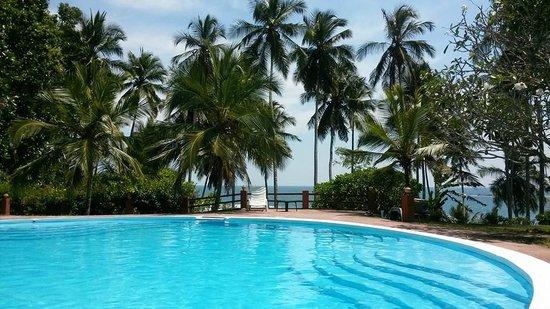 Eva Lanka Hotel: Piscine