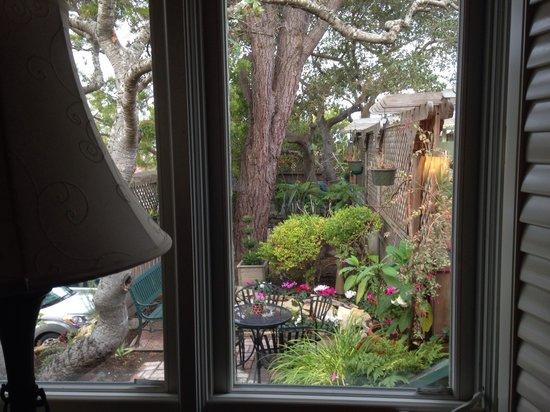 Carmel Garden Inn: 窗外的景色