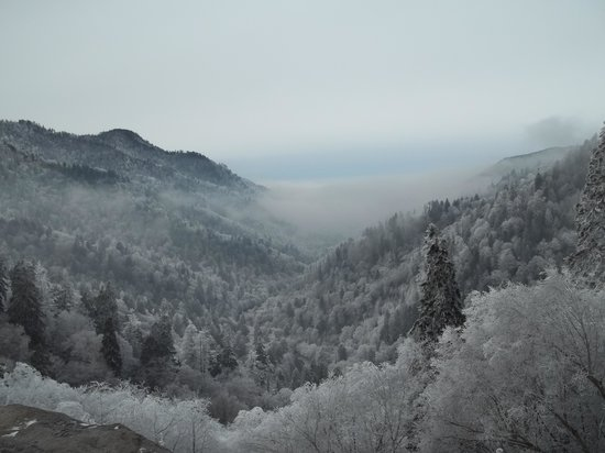 Best of Great Smoky Mountains National Park, TN