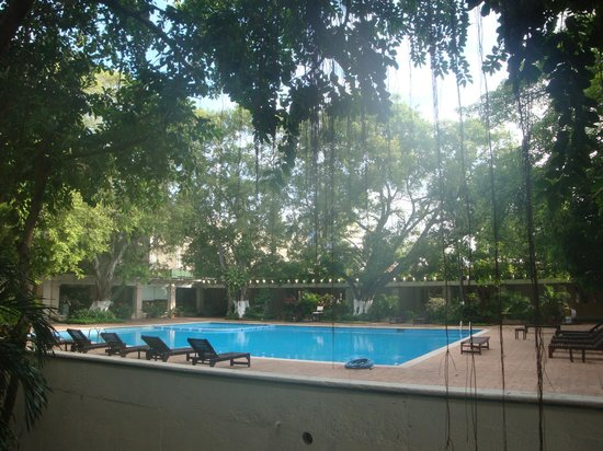 Hotel Viva Villahermosa: Alberca