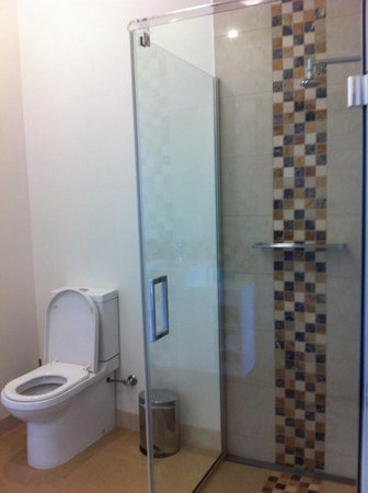 Mantra Charles Hotel : Standing shower and toilet. Very spacious and drainage of standing shower is nicely made with lo